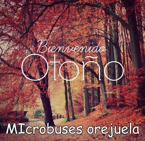 otoño microbus